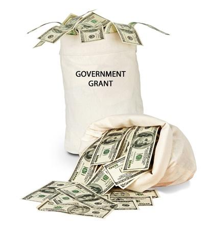 grant: Government grant