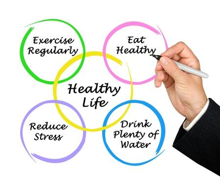nutrici�n: Diagrama de vida saludable Foto de archivo