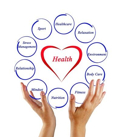 Diagramm der Gesundheit