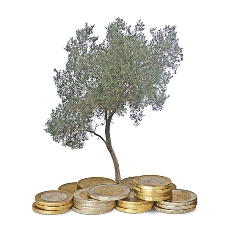 ecosavy: Olive tree growing from pile of coins