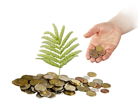 Investing to green business photo