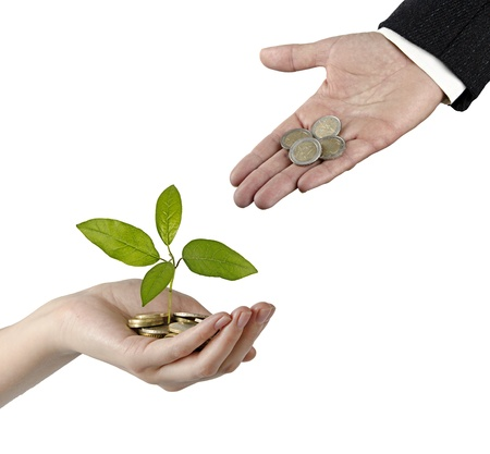 Investing to green business Stock Photo - 18262924