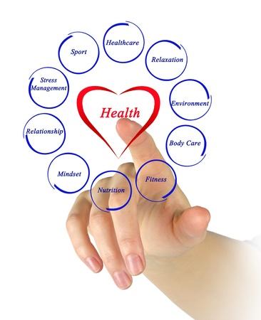 gesundheitsmanagement: Diagramm der Gesundheit