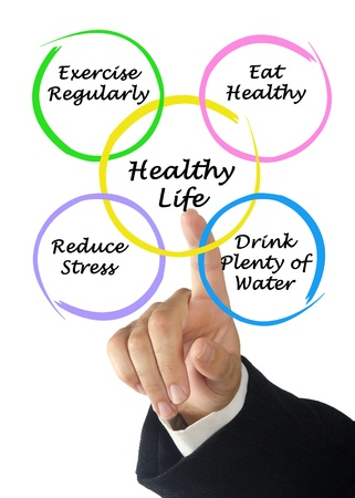 Diagram of healthy life Stock Photo - 18549320