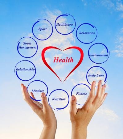 health management: Diagram of health Stock Photo