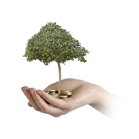 Investing to green business Stock Photo - 18549312