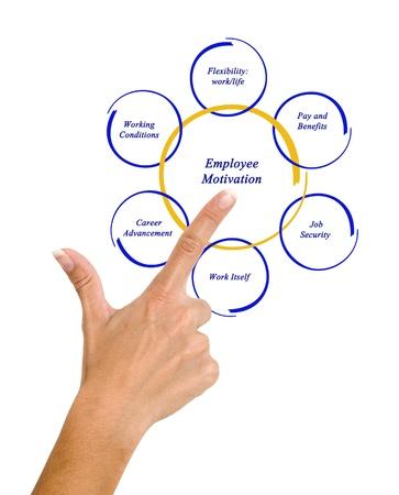 Diagram van de motivatie van werknemers