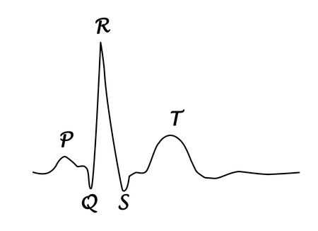 ECG graph with heart photo