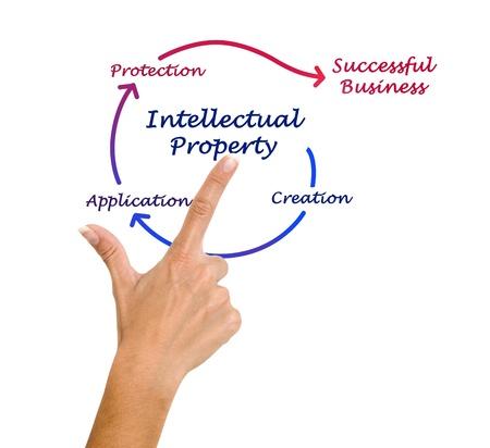 creador: Diagrama de la propiedad intelectual