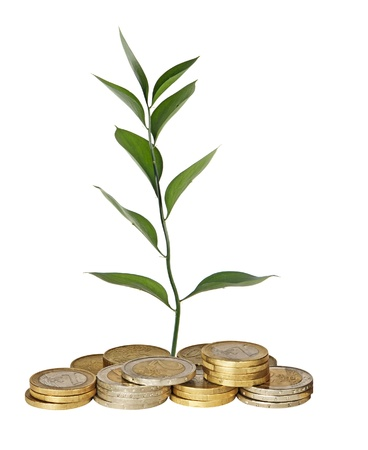 ecosavy: Plant growing from coins