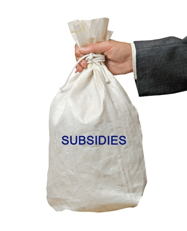 Bag with subsidies Stock Photo - 19119169