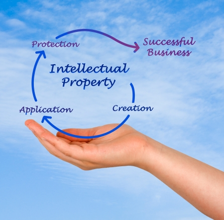 Intellectual property diagram Stock Photo - 19605354