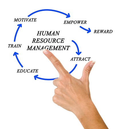 human resource management Stock Photo - 19878338
