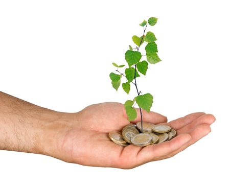 Investment to green business Stock Photo - 19878410
