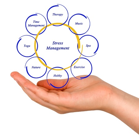 Diagram Of Stress Management Stock Photo Picture And Royalty Free