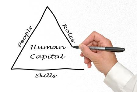 capital humano: Capital Humano