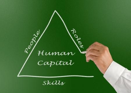 human capital: Human Capital
