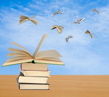 cielos abiertos: Los libros de vuelo