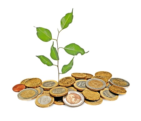 offset up: Sapling growing from coins