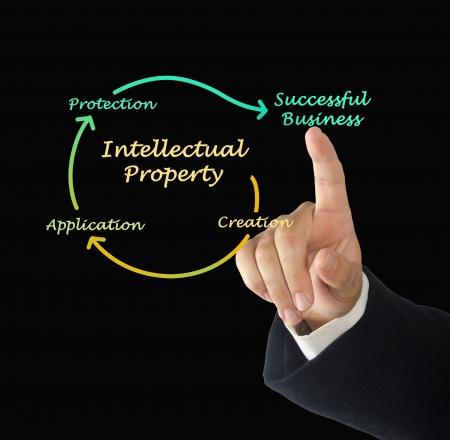 Intellectual property diagram Stock Photo - 21879485