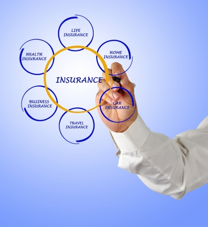 presenting insurance diagram photo