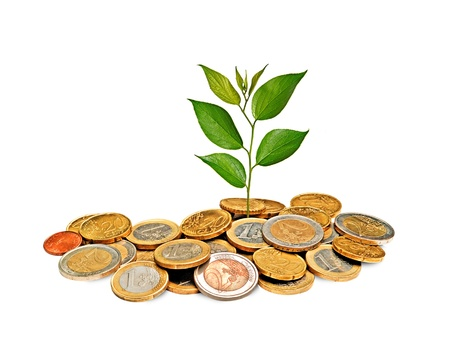 forestation: Sapling growing from coins