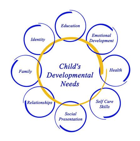 developmental: Childs Developmental Needs