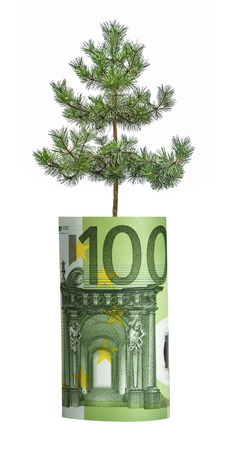 offset up: tree growing from euro bill Stock Photo
