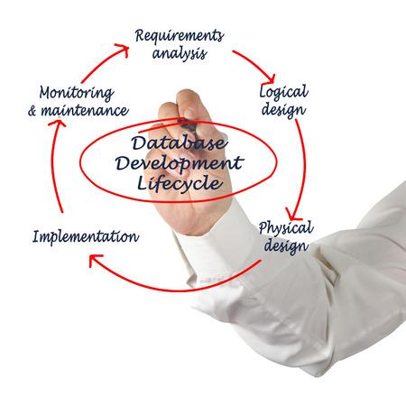 ciclo de vida: Ciclo de vida del desarrollo de bases de datos