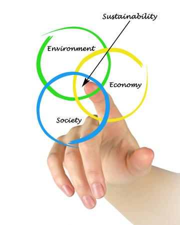 optimal: Presentation of diagram of sustainability