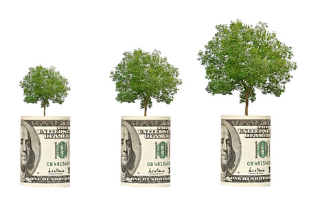 subsidy: trees growing from dollar bill Stock Photo
