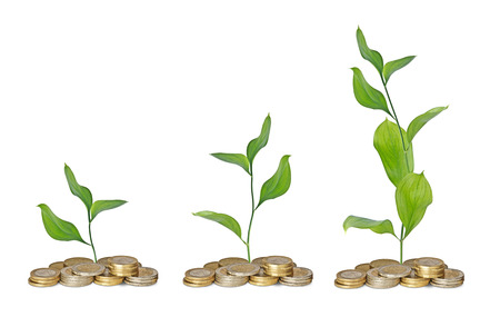 Saplings growing from coins photo