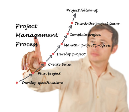 project manager: Project Management Process