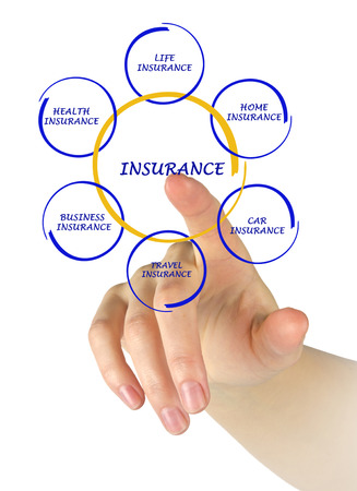 Woman presenting insurance diagram photo