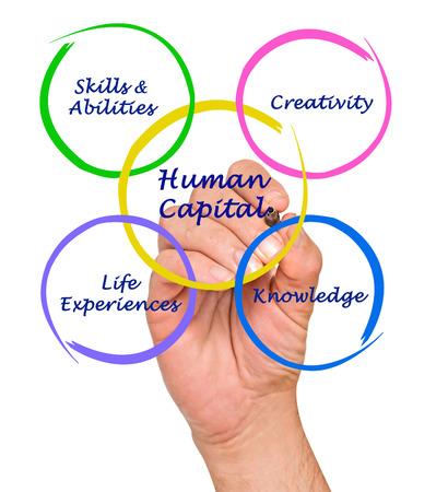 capital humano: El capital humano Foto de archivo
