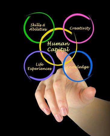 Human capital photo