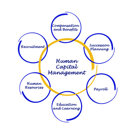 succession planning: Human Capital Management Stock Photo