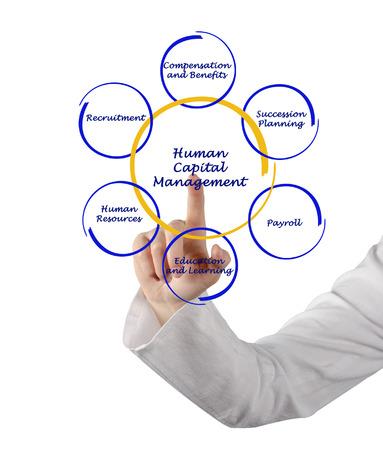 personel: Human capital