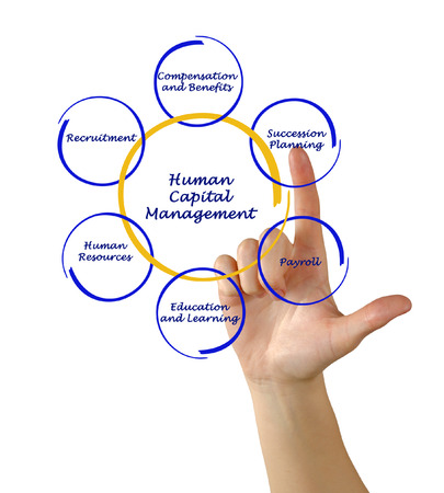 Diagram of Human capital photo