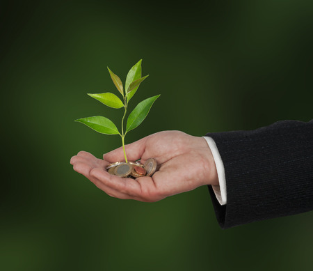 tree vertical: Investing to green business