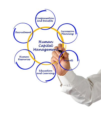 succession planning: Human Capital Management Stock Photo