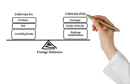 expenditure: Balance between Energy intake and Energy expenditure