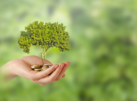 green footprint: Investing to green business          Stock Photo