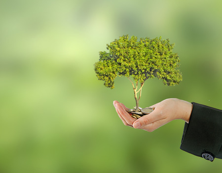 Investing to green business Stock Photo - 27822442
