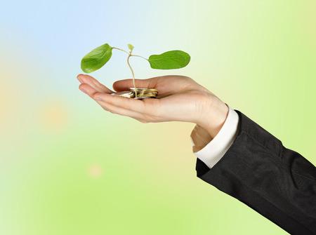 ecosavy: Sapling in hand