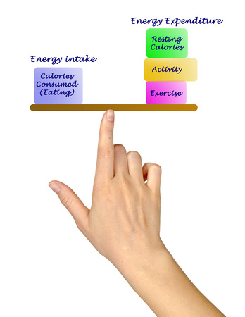 expenditure: Balance between Energy intake and Energy expenditure diagram