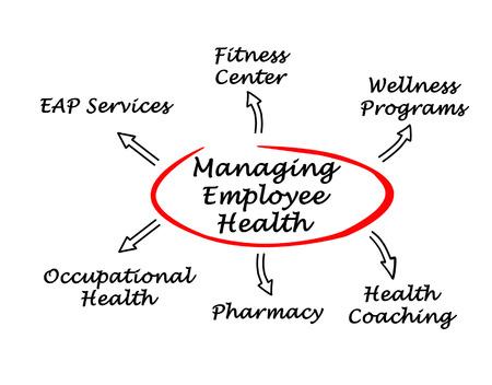 Gestión de Salud para Empleados Foto de archivo - 29342090
