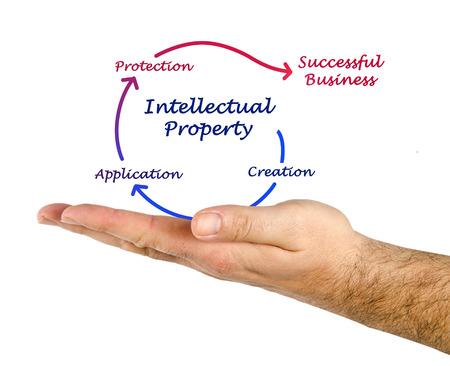 lawer: Intellectual property diagram