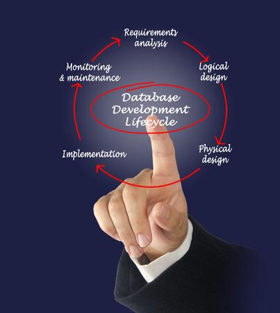 programmer computer: Database development lifecycle