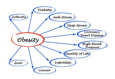 enfermedades del corazon: Diagrama de la Obesidad Foto de archivo